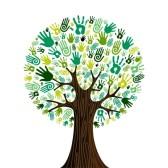 albero mani 4