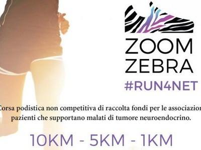 zoomzebra #runfornet